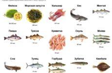 Продукты питания, содержащие йод: пересматриваем собственные привычки